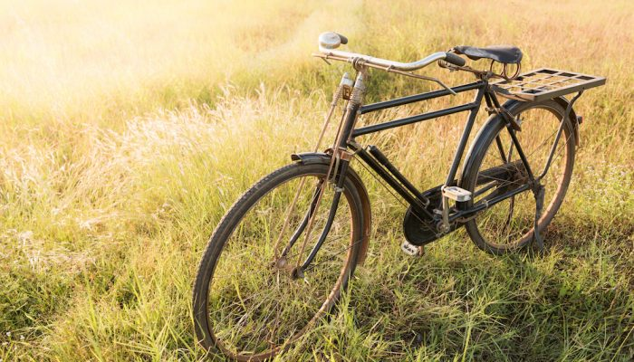 Vintage Bicycle with Summer grassfield